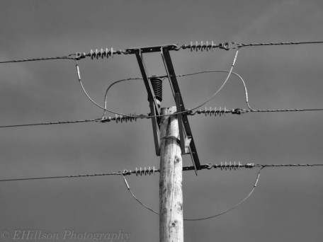 Power lines in monochrome